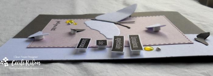 Carte FMS343 - DSCN6190