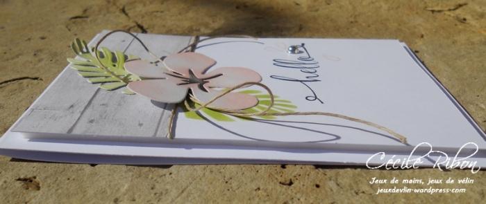 Carte FUSION34 - DSCN6312