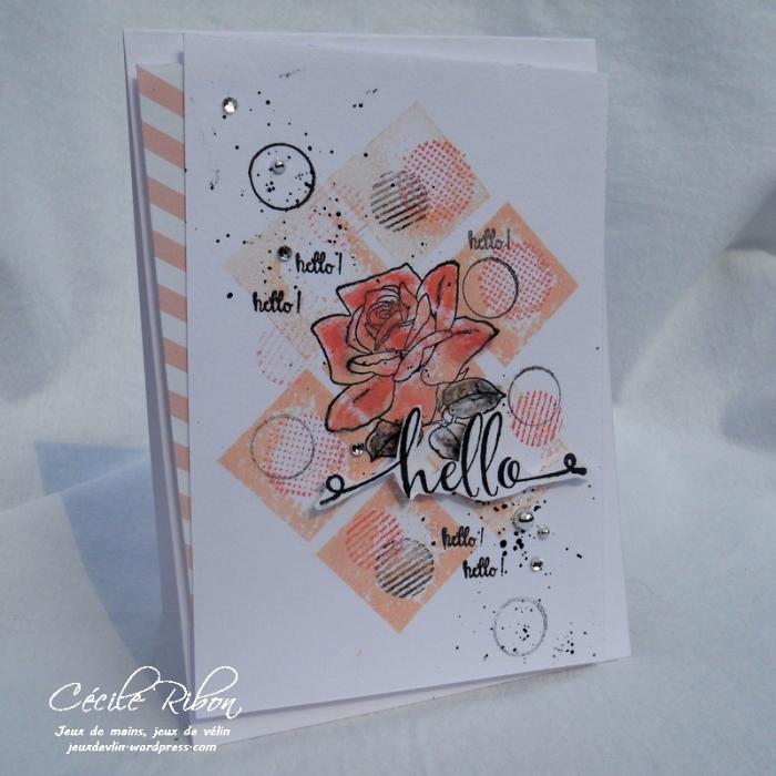 Carte AID38 - DSCN6288