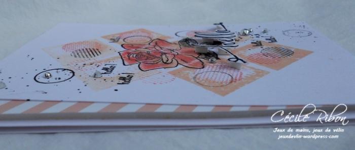 Carte AID38 - DSCN6291