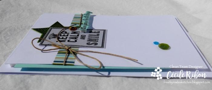 Carte FMS350 - DSCN6632