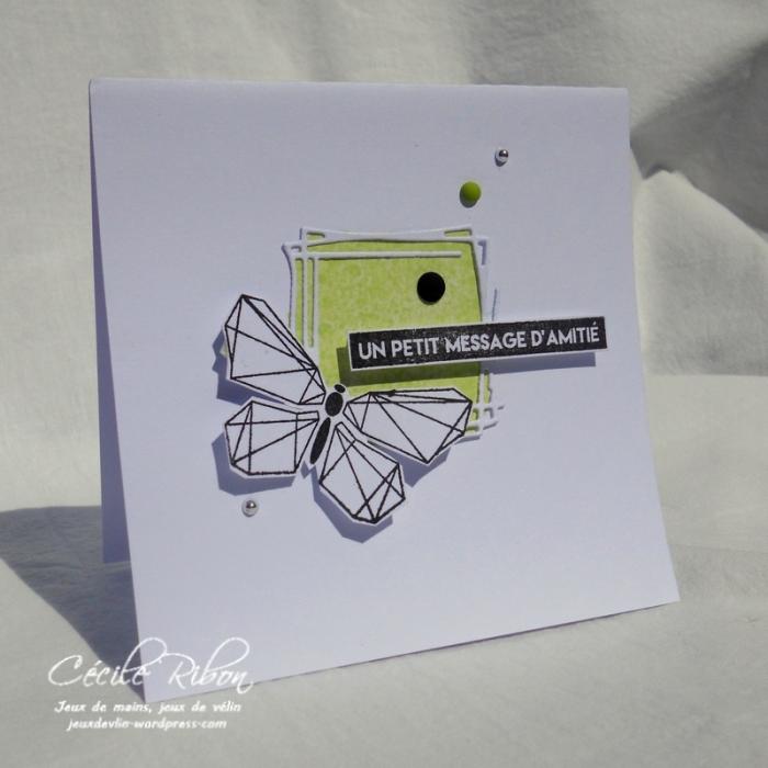 Carte Maniak183 - DSCN6388