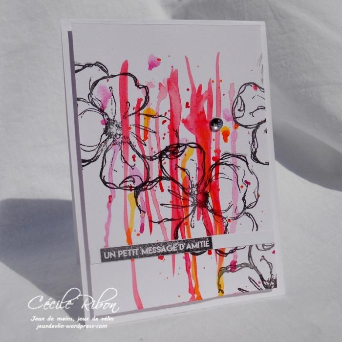 Carte AIDSep18S1 - DSCN6410