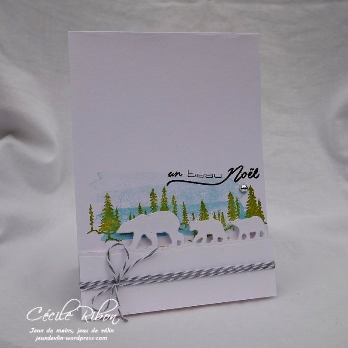 Carte CTD512 - P1000157