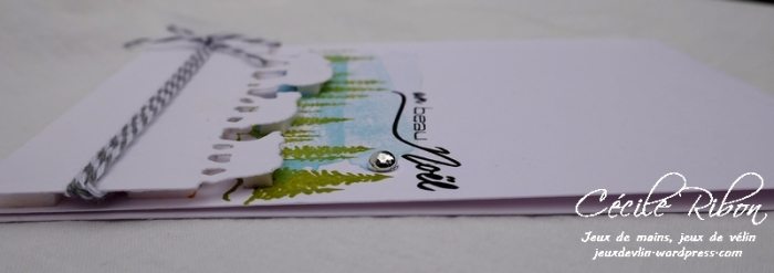 Carte CTD512 - P1000160