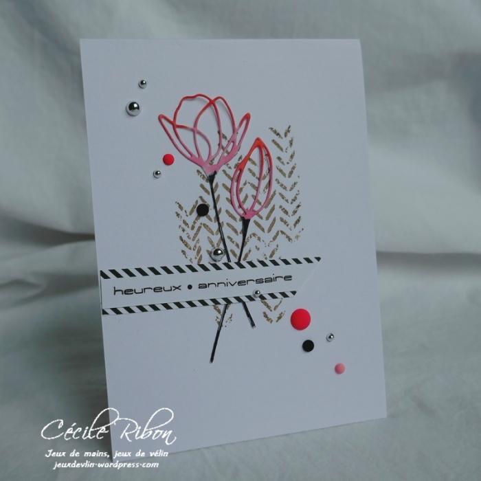 Carte AID39 - P1000131