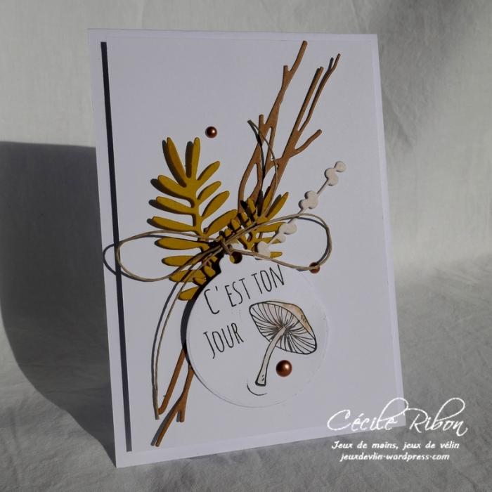 Carte Creablabla357 - P1000505