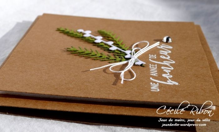 Carte CTD515 - P1000454