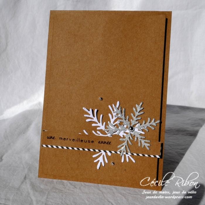 Carte CTS293 - P1000337