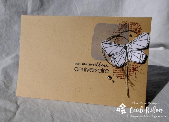 Carte FMS359 - P1000352