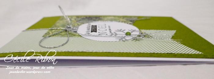 Carte FUSION38 - P1000245