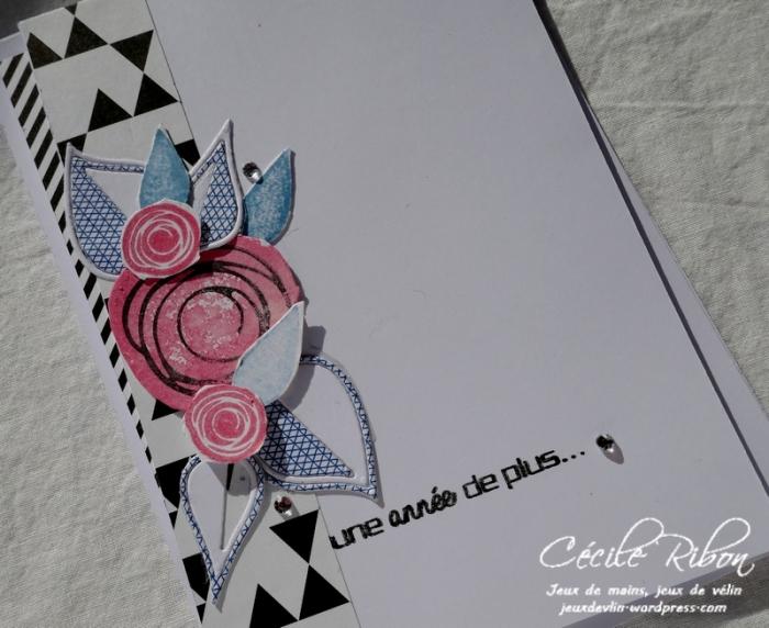 Carte Fusion39 - P1000470