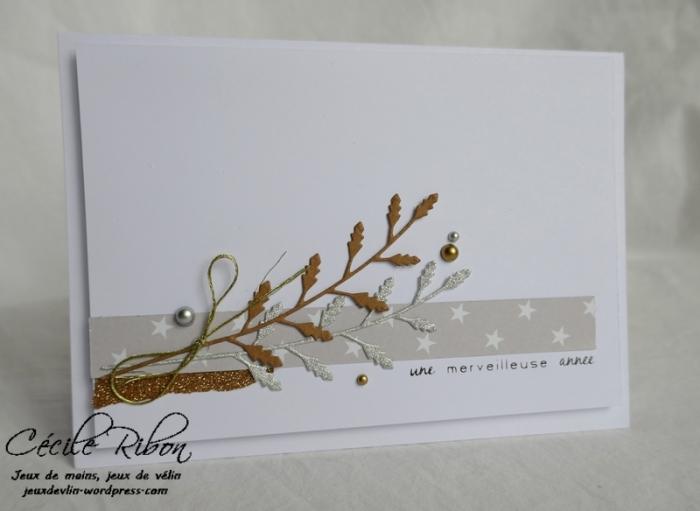 Carte Maniak188 - P1000622