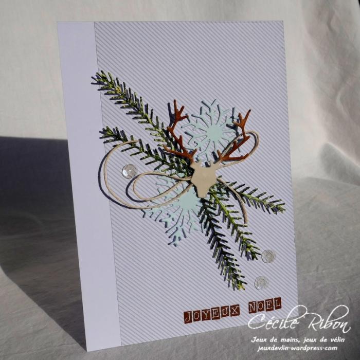 Carte AID42 - P1000722