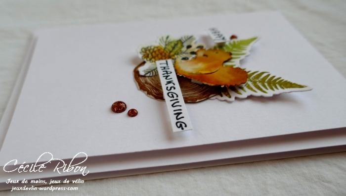 Carte Alexia - P1010124