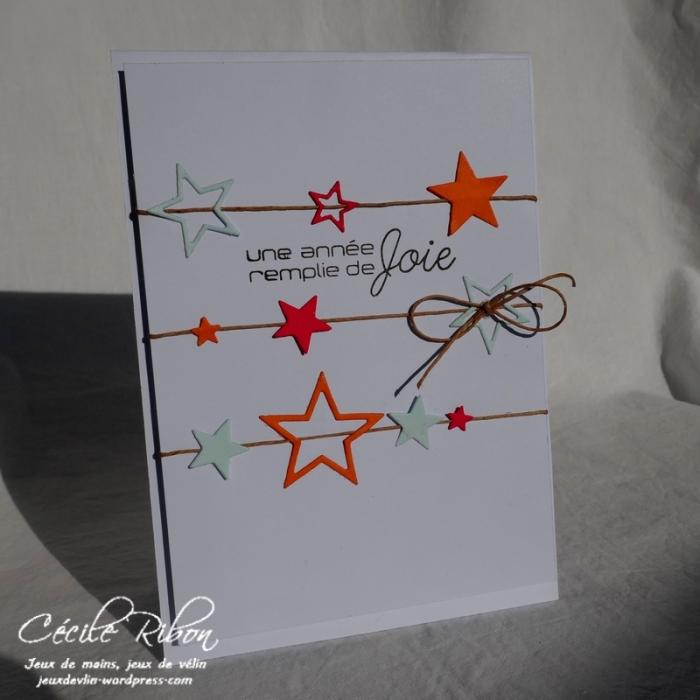 Carte CTD517 - P1000709