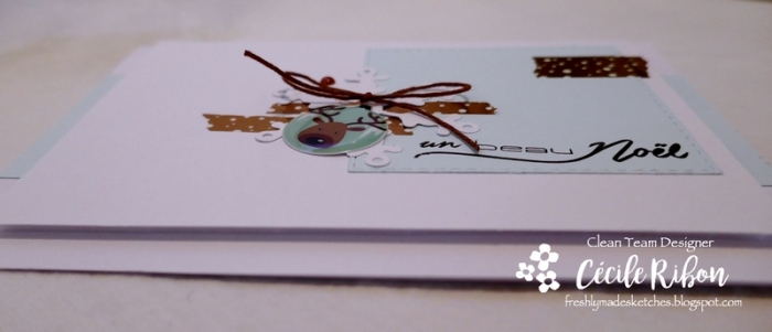 carte FMS364 - P1010162