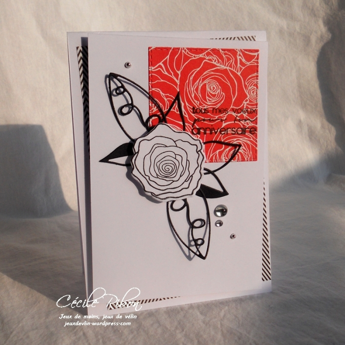 Carte Ana - DSCN5380