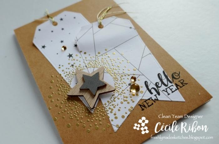 Carte FMS368 - P1010697