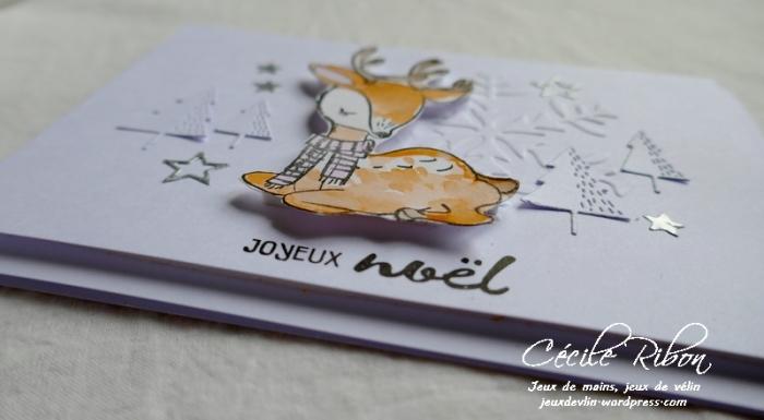 Carte AID43 - P1010227