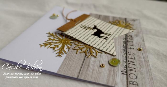 Carte AID43 - P1010260