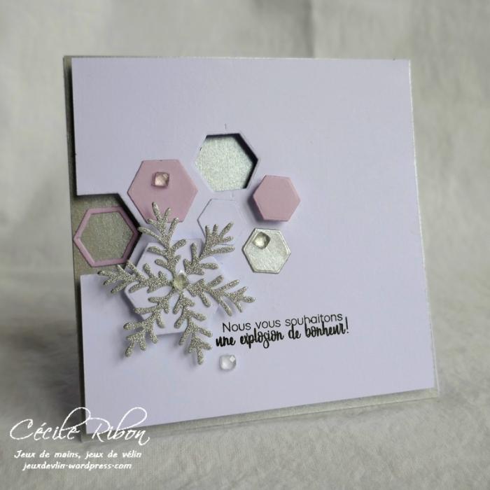 Carte AID45 - P1010873