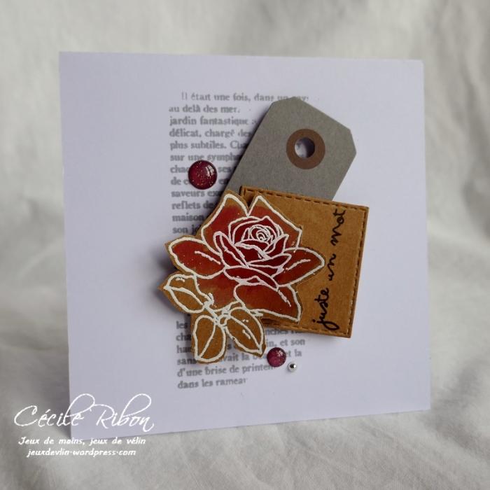 Carte AID48 - P1020528