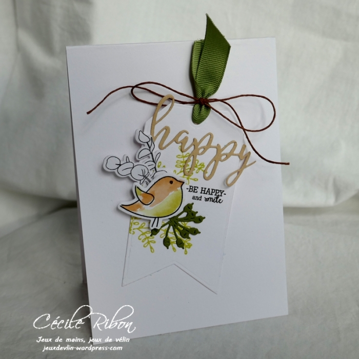 Carte CBBB3 - P1020503