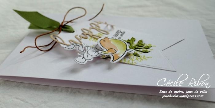 Carte CBBB3 - P1020511