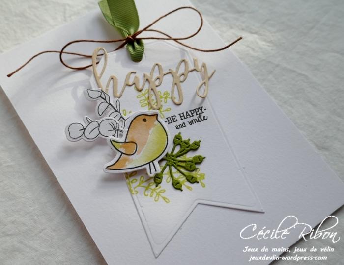 Carte CBBB3 - P1020522