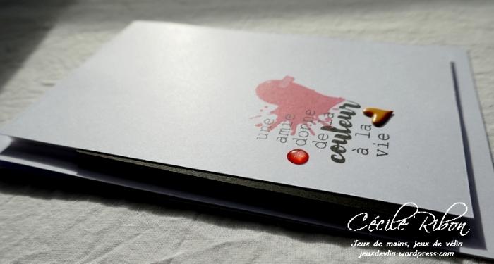 Carte CTD529 - P1020596