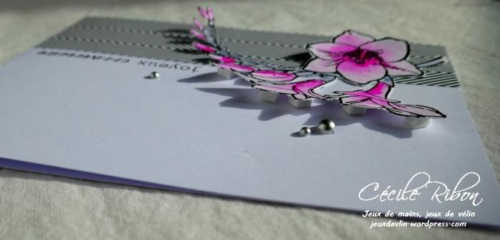 Carte CTD530 - P1020765