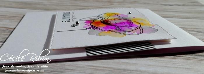 Carte CTD531 - P1020968