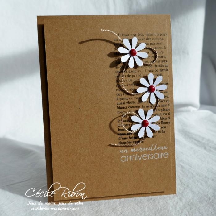 Carte CTS308 - P1020657
