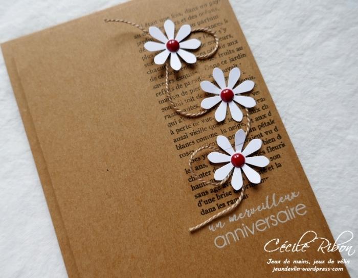 Carte CTS308 - P1020674