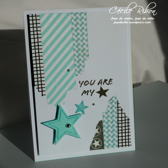 Carte CTS309 - P1020880