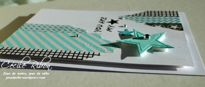 Carte CTS309 - P1020904