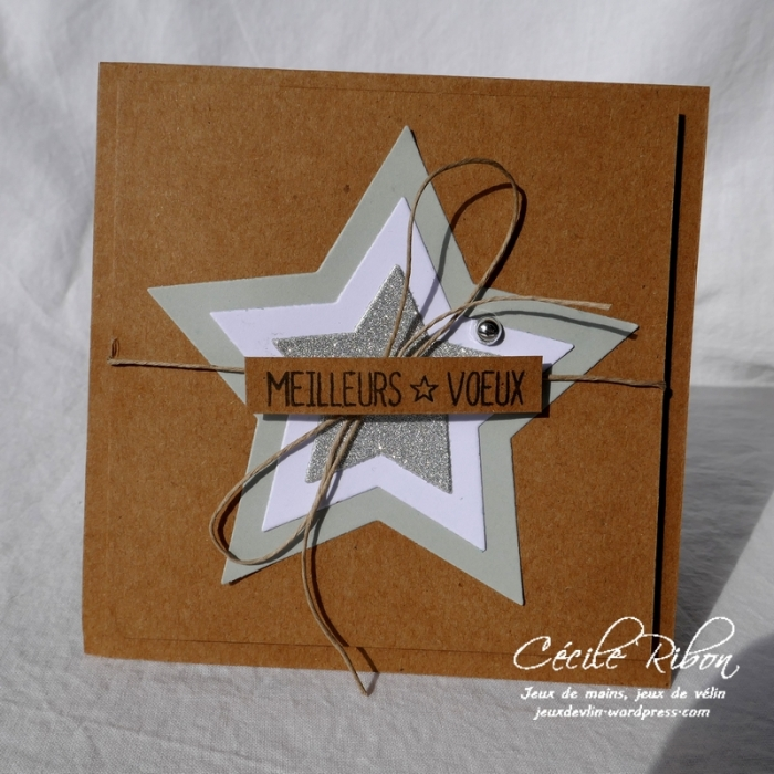 Carte DTFMS - P1000396