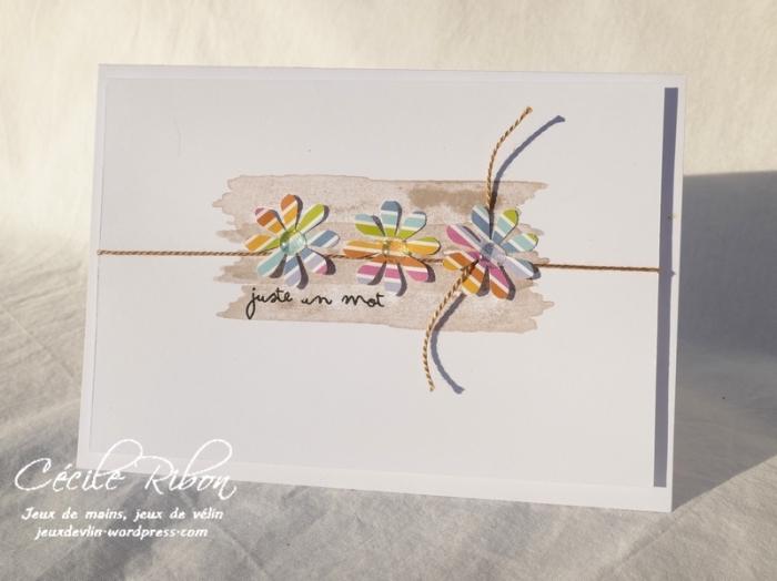 Carte FUSION42 - P1030039