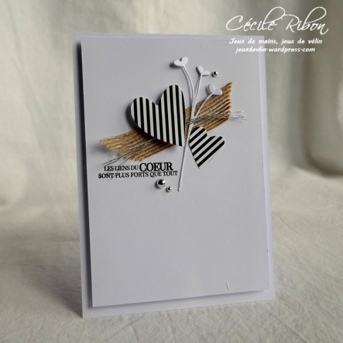 Carte LS80 - P1020609