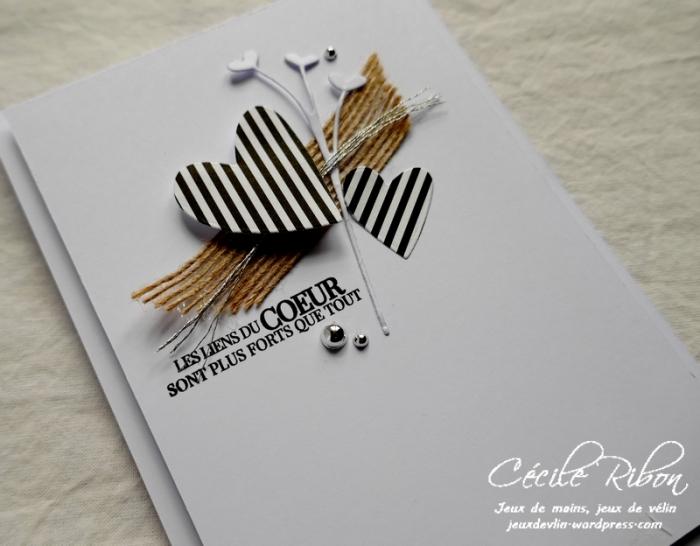 Carte LS80 - P1020621