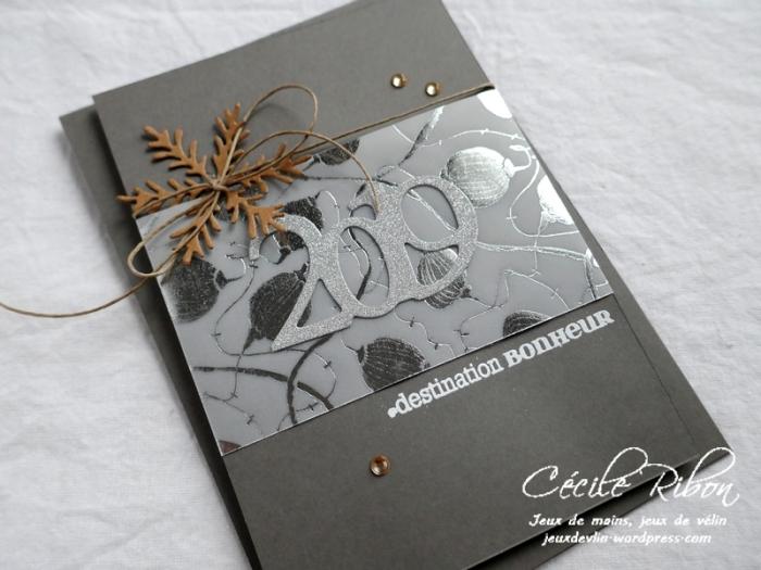 Carte Nadine - P1020386