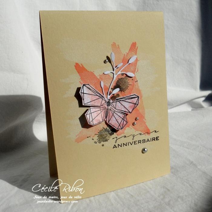Carte NatBr - DSCN5499