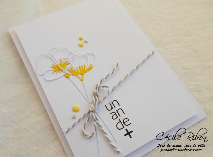 Carte AID49 - P1020865