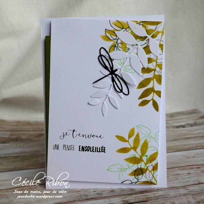 Carte AID50#1 - P1020935