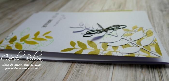 Carte AID50#1 - P1020941