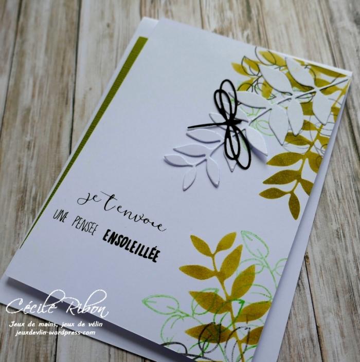 Carte AID50#1 - P1020944