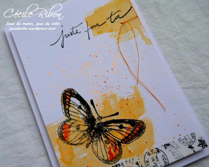 Carte AID50#3 - P1030161
