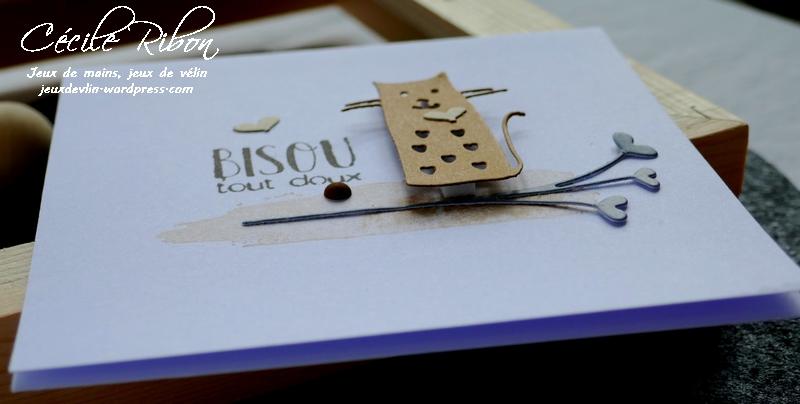Carte AID50#5 - P1030359