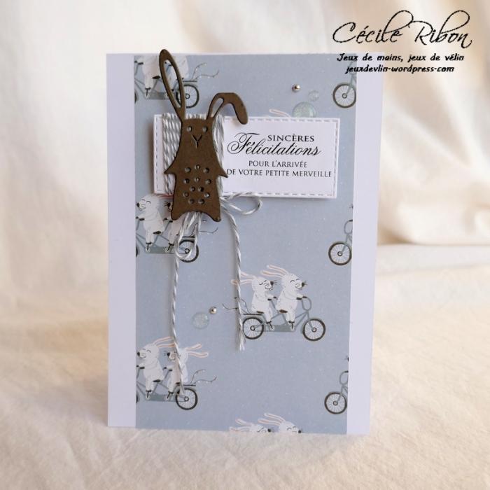 Carte CBBB4 - P1020828